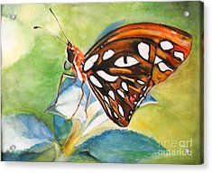 Acrylic Print featuring the painting Gulf Fritillary Butterfly by Sibby S