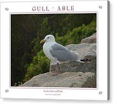 Gull Able Acrylic Print by Peter Muzyka