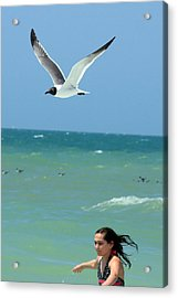 Gull And Girl Acrylic Print