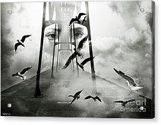 Gull Bridge Acrylic Print