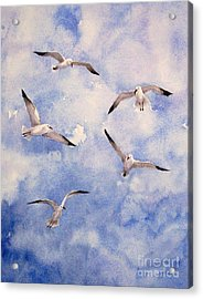 Gulls Is Flight Acrylic Print