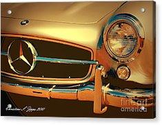Gullwing IIi Acrylic Print