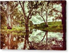 Acrylic Print featuring the photograph Gum Creek V2 by Douglas Barnard
