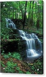 Gunn Brook Falls Acrylic Print