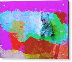 Gwen Stefani Acrylic Print by Naxart Studio