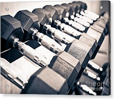 Gym Dumbbell Free Weights Rack Acrylic Print by Paul Velgos