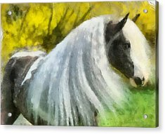 Acrylic Print featuring the painting Gypsy by Elizabeth Coats