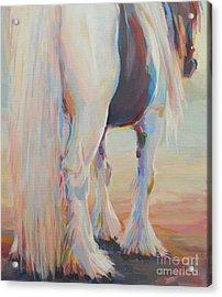 Gypsy Falls Acrylic Print
