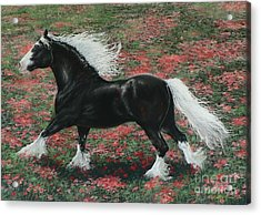 Gypsy Fire Acrylic Print by Louise Green