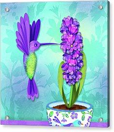 H Is For Hummingbird Acrylic Print