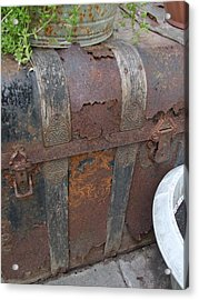 H Trunk Acrylic Print by Ali Dover