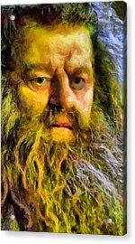 Hagrid Acrylic Print