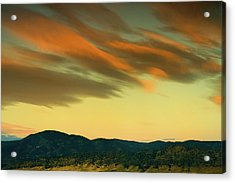 Acrylic Print featuring the photograph Hailing The Sky by John De Bord