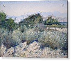 Hajar Mountains Oman 2002 Acrylic Print by Enver Larney