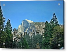 Half Dome Through The Trees 1 Ahwahnee Drive Yosemite National Park Ca Acrylic Print by Duncan Pearson