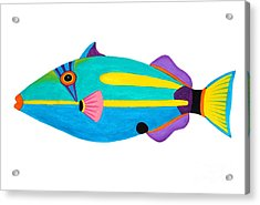 Halfmoon Triggerfish  Acrylic Print by Opas Chotiphantawanon