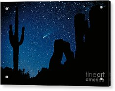 Halley's Comet Acrylic Print by Frank Zullo