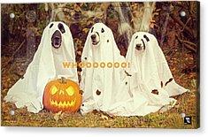 Halloween Hounds Acrylic Print