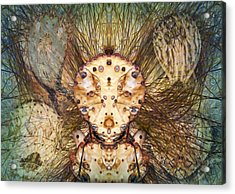 Hallucina-jim Acrylic Print