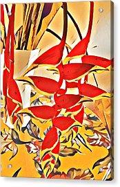 Halyconia Bouquet In Orange Acrylic Print