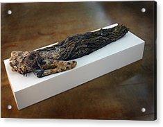 Hamadryad A Sculpture By Adam Long Acrylic Print by Adam Long