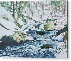 Hamburg Mountain Stream Acrylic Print