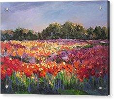 Hamilton Dahlia Farm Acrylic Print