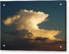 Hammerhead Cloud Acrylic Print