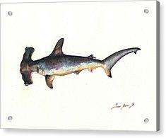 Hammerhead Shark Acrylic Print