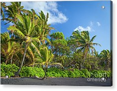 Hana Palm Tree Grove Acrylic Print by Inge Johnsson