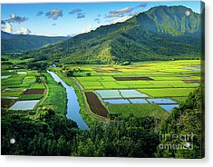 Hanalei Valley Acrylic Print by Inge Johnsson