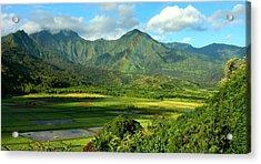 Hanalei Valley Rainbow Acrylic Print by Stephen Vecchiotti