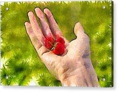 Hand And Raspberries - Da Acrylic Print by Leonardo Digenio