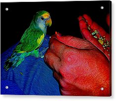 Hand Fed In Abstract Acrylic Print