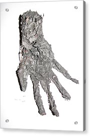 Hand Acrylic Print by Kyle Ethan Fischer