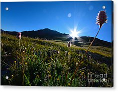 Acrylic Print featuring the photograph Handies Peak Sunrise by Kate Avery