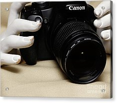 Hands In Still Life  Acrylic Print by Steven Digman
