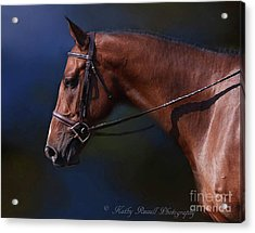 Handsome Profile Acrylic Print
