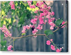Acrylic Print featuring the photograph Hang On by Megan Dirsa-DuBois