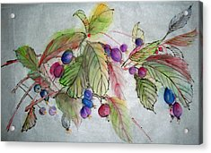 Acrylic Print featuring the painting Hanging Crabapples by Debbi Saccomanno Chan