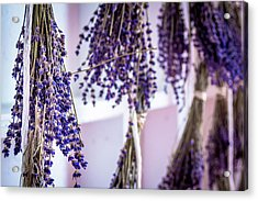 Hanging Lavender Acrylic Print
