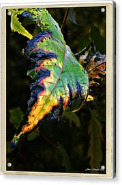 Acrylic Print featuring the photograph Hanging Out by Joan  Minchak