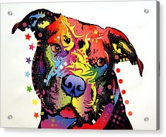 Happiness Pitbull Warrior Acrylic Print by Dean Russo