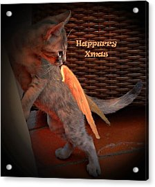 Happurry Xmas Acrylic Print by Dorothy Berry-Lound