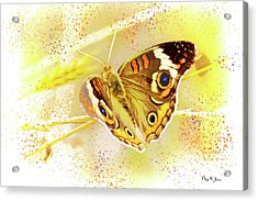 Acrylic Print featuring the digital art Happy Buckeye by Barry Jones