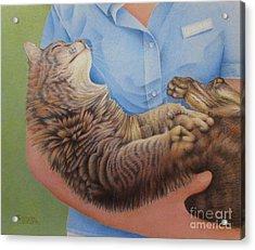 Happy Cat Acrylic Print by Pamela Clements