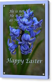 Acrylic Print featuring the photograph Happy Easter Hyacinth by Ann Bridges