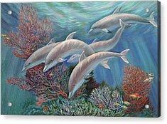 Happy Family - Dolphins Are Awesome Acrylic Print by Svitozar Nenyuk