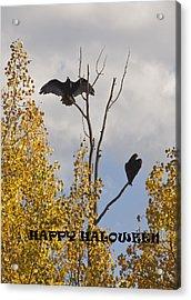 Acrylic Print featuring the photograph Happy Halloween by Daniel Hebard
