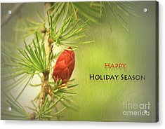 Acrylic Print featuring the photograph Happy Holiday Season Card by Aimelle
